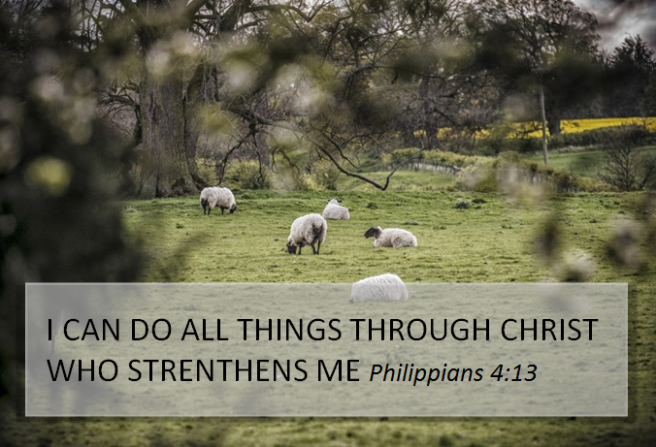 Verse of the Day – 20